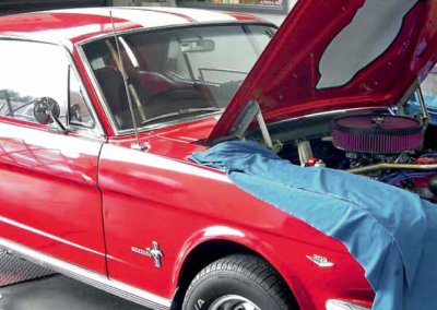 Mustang Power-Up – NZV8